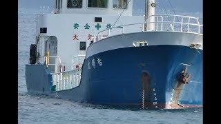 まだ建設途中の宿毛新港での撮影です。巨大ケーソンを見に行ってふと海...