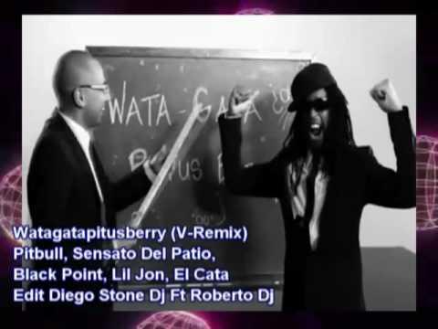 Diego Stone Dj Ft Roberto Dj - Watagatapitusberry (Electro Remix)