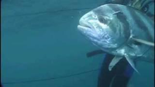 Pesca Submarina en Nicaragua