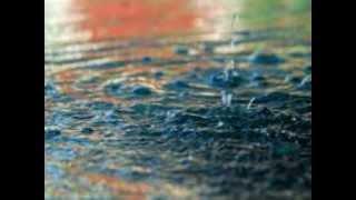 Dj Quicksilver - African Rain