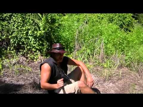 Animal Man: Mitchell Tortwaa-Short Film and Pilot (Comedy)