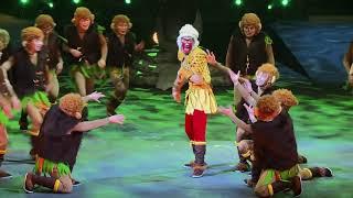Le Roi des Singes - Dernières représentations !