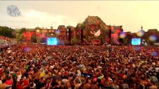 Hardwell Live @ Tomorrowland, Track: Hardwell & Dyro - Never Say Goodbye (Wildstylez Bootleg) (HQ)