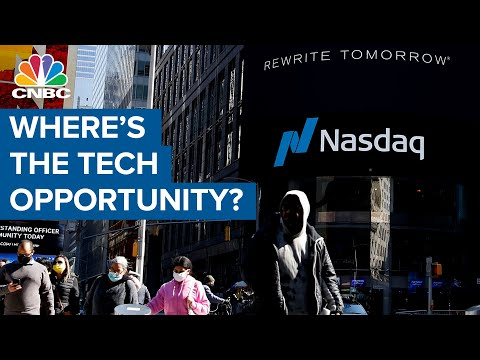Lot of tech stock opportunity here: Stephanie Link