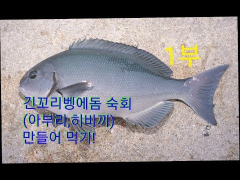 긴꼬리 벵에돔 숙회(아부리회,히비끼회,토치�