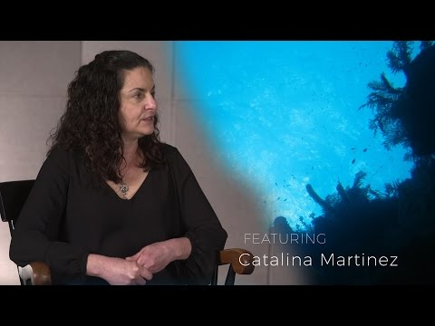 Confluence: Catalina Martinez - Regional Program Manager/Educator, NOAA