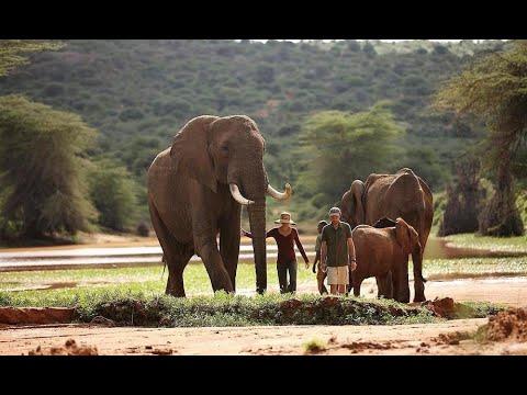 Ol Jogi | Ol Jogi Ranch, Safari & Conservancy | Ol Jogi Home