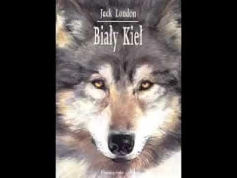 Biały Kieł - Jack London | Audiobook PL