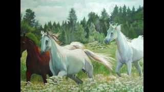 Kocham Konie :) Moja Pasja ! :)