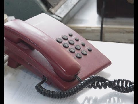 Для жалоб на действия судебных приставов работает «телефон доверия»