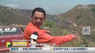 [国际财经报道]关注亚马孙雨林大火 记者深入重灾区 着火点不断出现| CCTV财经