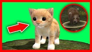СИМУЛЯТОР Маленького КОТЕНКА #30 ОНЛАЙН ИГРА кошка ИГРАЕТ с КОТЯТЯМИ ДЕТСКИЕ ИГРЫ