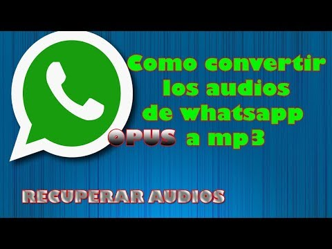 OPUS. Convertir WHAT´S APP audio (OPUS) a MP3. letig99