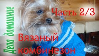 Как связать комбинезон для собаки своими руками .Часть 2.
