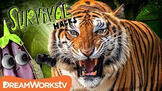 Survive a TIGER Attack | SURVIVAL HACKS