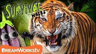 Survive a TIGER Attack | SURVIVAL HACKS