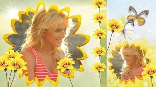 Солнечное настроение. Бесплатные стили ProShow Producer