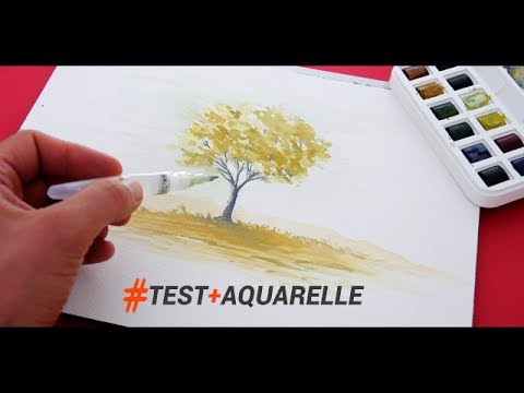 outils et technique pour peindre l aquarelle rapidement youtube. Black Bedroom Furniture Sets. Home Design Ideas