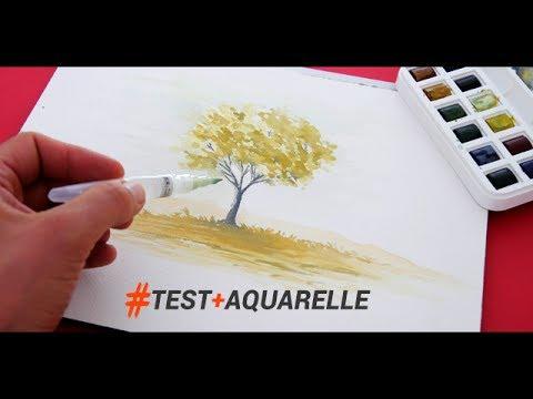 Outils Et Technique Pour Peindre A L Aquarelle Rapidement Youtube