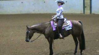Triple Chip Dc Western Horsemanship Pattern