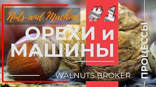 Переработка орехов. Walnut &am…