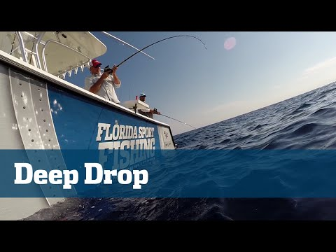 Deep Drop Blackberry Rosefish Power Assist Reels - Florida Sport Fishing TV