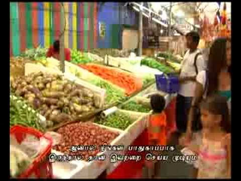 Foreign Workers' Accounts of Safety in Singapore's Marine Industry (Tamil subtitles)