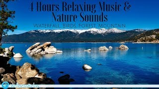 4 Hours Relaxing Music & Nature Sounds: Waterfalls, Birds, Forest, Mountain