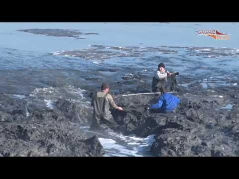 Двое мужчин застряли в иле из комратского озера