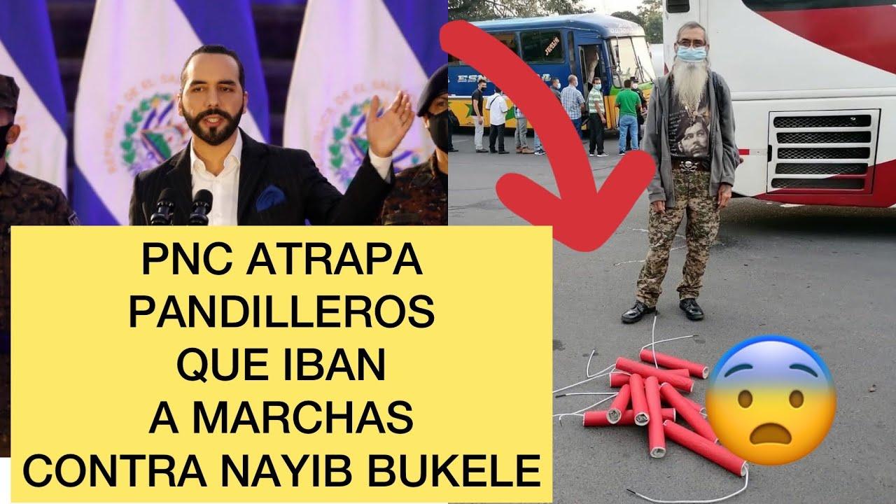 Bukele atrap4 pandiller0s que iban a la marcha de ARENA Y FMLN