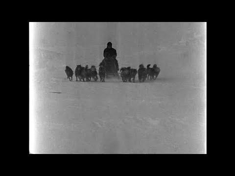 Путешествие Руаля Амундсена на Южный Полюс (1910 - 1912)