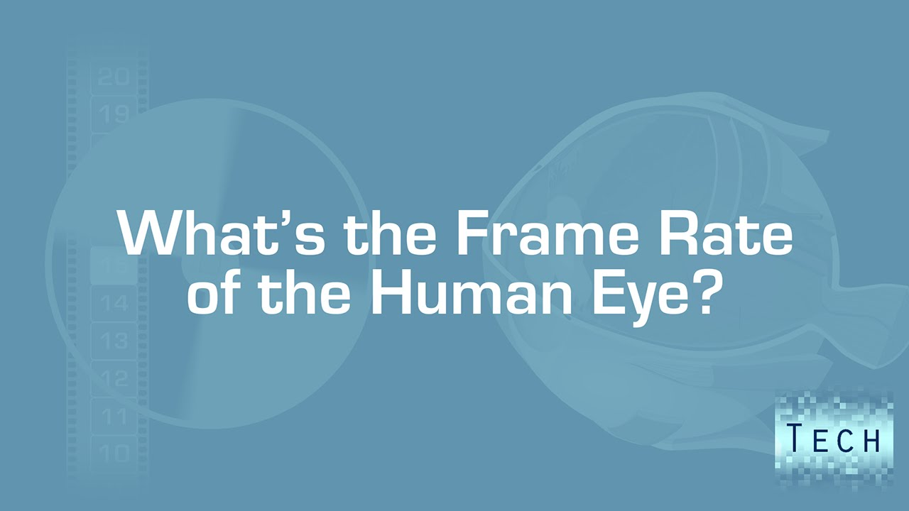 So wait...what's the frame rate of our eyes?