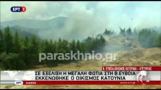 Πυρκαγιά στη Β  Εύβοια