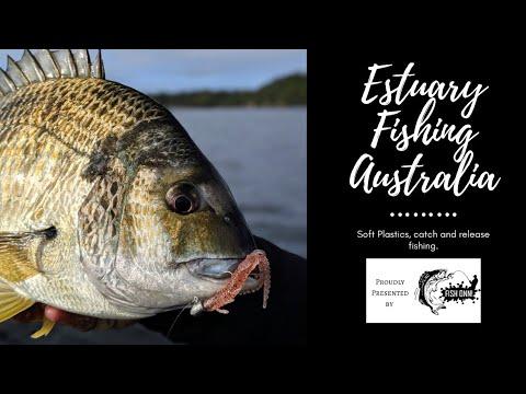 Estuary Fishing Australia