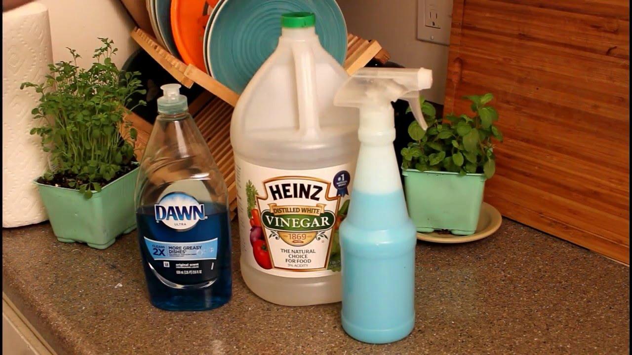 Como limpiar tu bano y cocina facilmente funnydog tv for Trucos para limpiar el bano