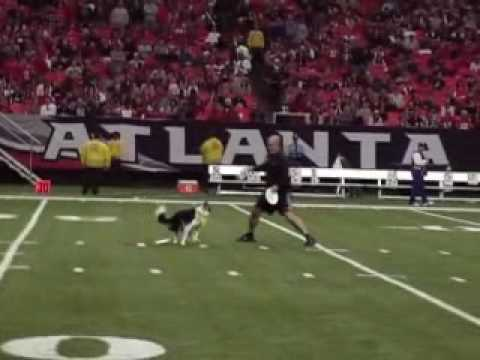 Atlanta Falcons Game Gipper and Mark Muir disc Dogging at Halftime