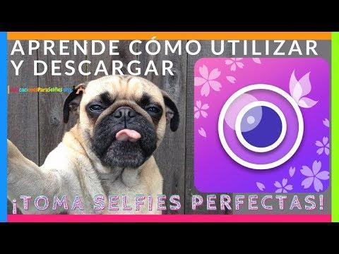 Cómo usar YouCam Perfect Foto Editor y Cámara-Selfie