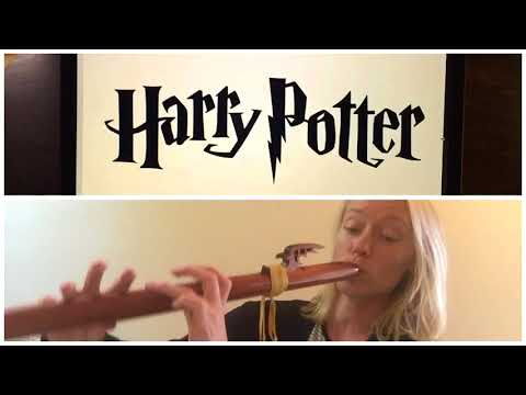 Hedwigs Theme - Harry Potter on Native American Flute
