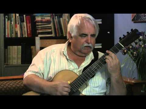 Michael Maguire 7String Guitar Daydream