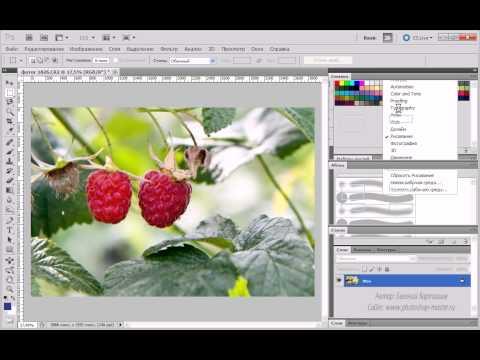 1. Знакомство с Adobe Photoshop CS5 ( 1.6 Рабочие среды )