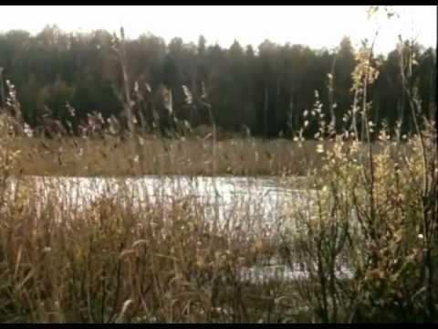 Видео Над темной водой фильм смотреть онлайн