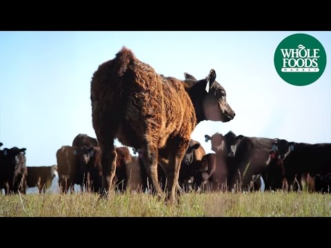 Panorama Meats | Meet the Ranchers | Whole Foods Market