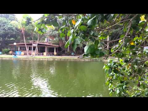 Josone park,  varadero cuba October 2015