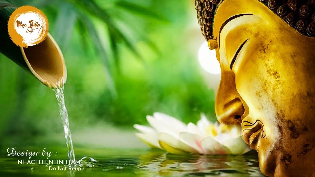 Nhạc Thiền Tịnh Tâm Ngủ Ngon – Nghe 15 phút xua tan muộn phiền, tâm hồn an lạc