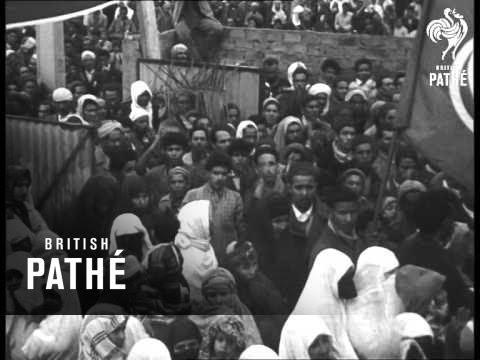 Elections In Tunisia (1956)