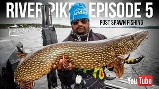 River Pike - Episode 5 - Post Spawn Fishing | Kanalgratis.se