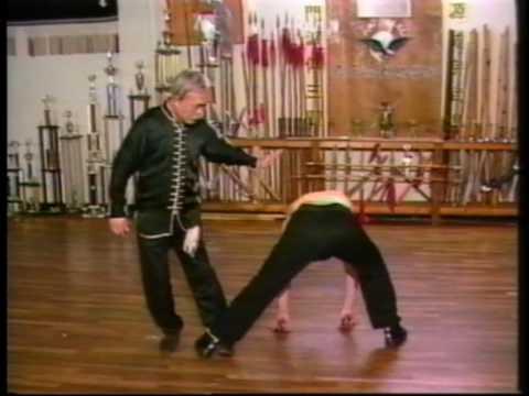 Kung Fu Eagle Style Kung fu demo 1 ...