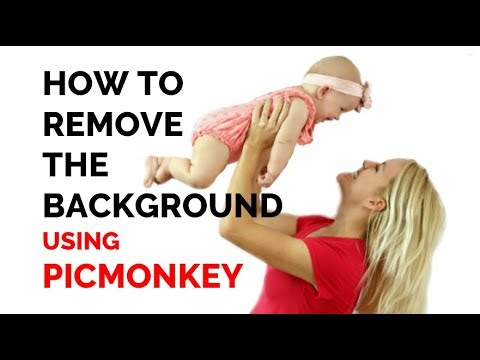 How to remove the background of a picture : PicMonkey Tutorial : Transparent Image