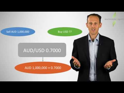 Foreign exchange rates - Financial Risk Management