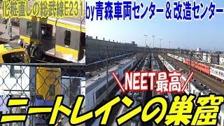 青森の車両基地がニートレイン化 485系 キハ40系 651系 余生を謳歌